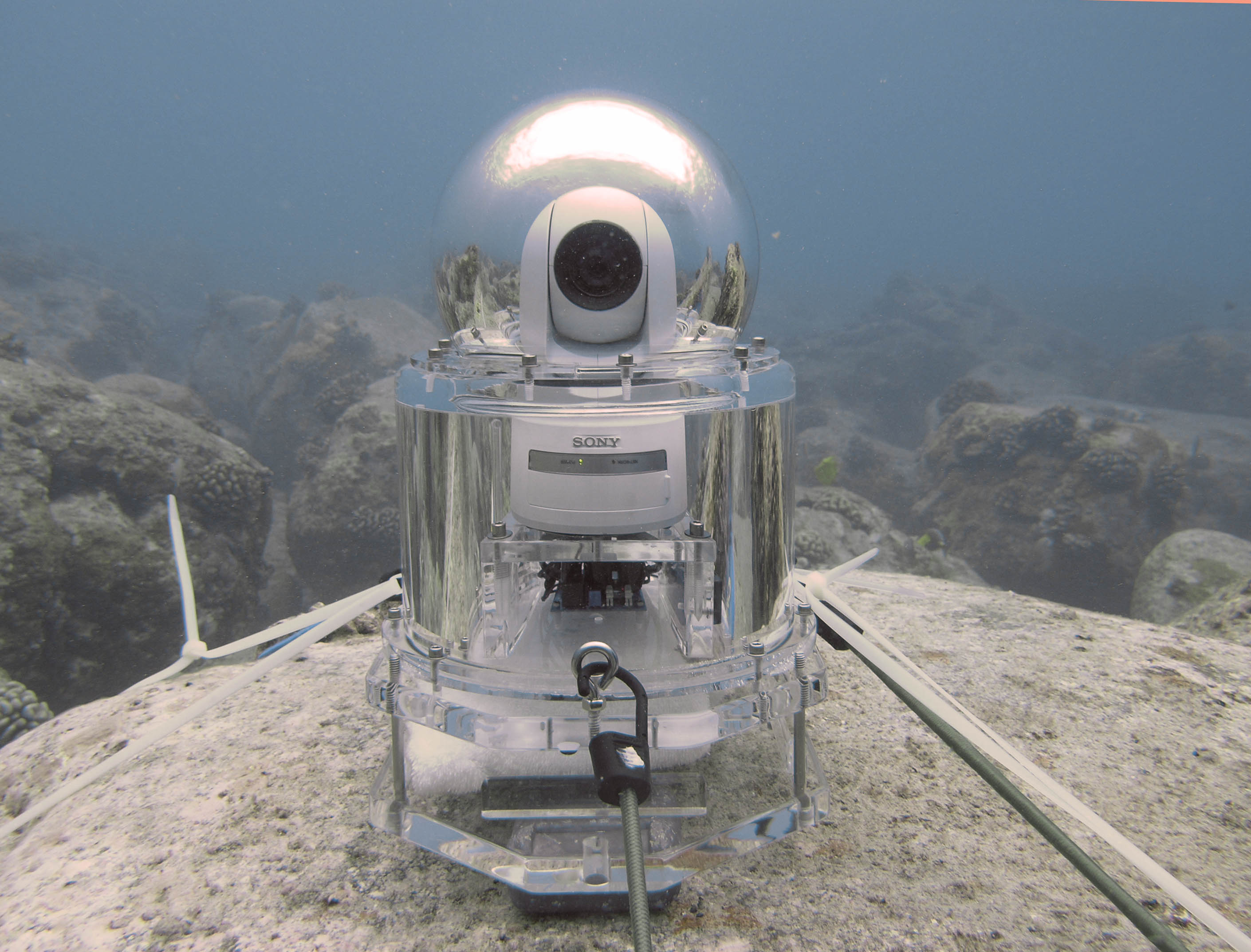 Underwater video camera deployed in Kona, Hawaii